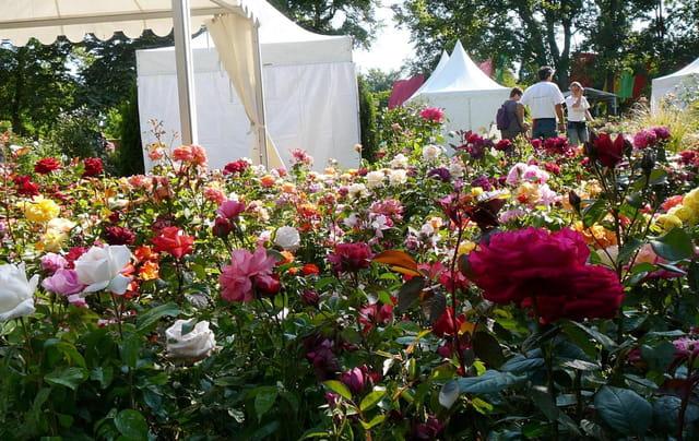Salon des plantes - La ronde des jardins
