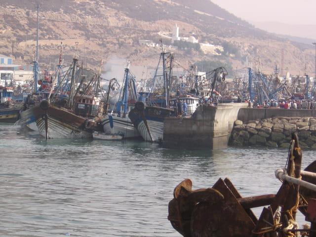 Sardiniers au port