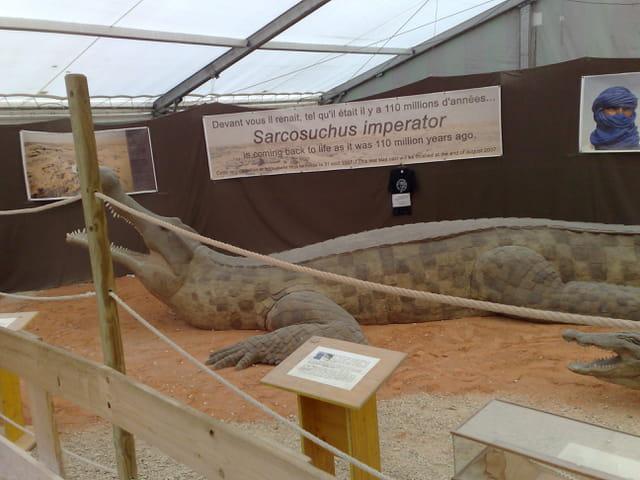 Sarkosuchus imperator