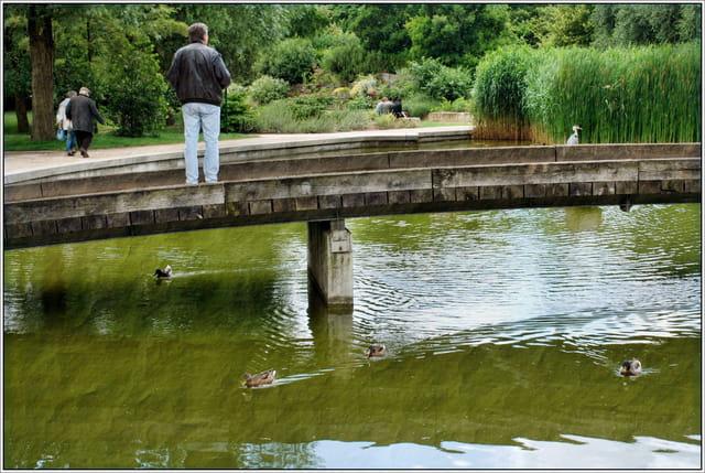 Scène du parc de Bercy