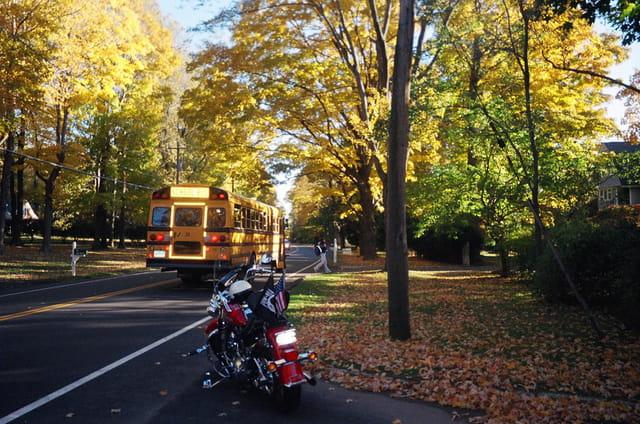 School bus u.s.a.