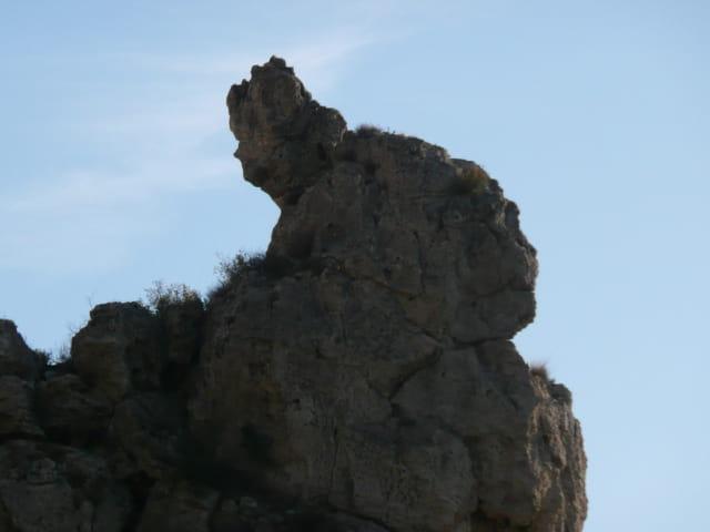 Sculpture de la nature