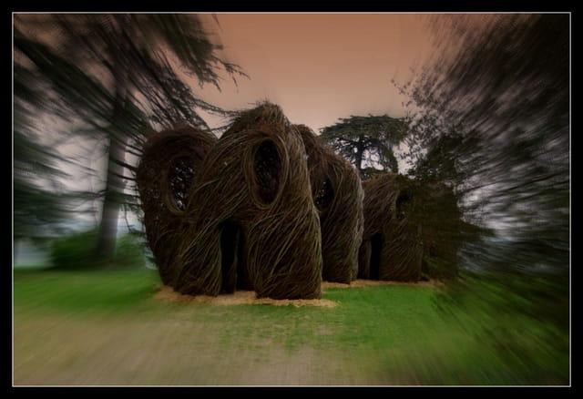 sculpture en branchage