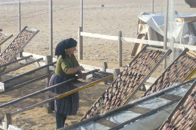 Sèchage des sardines à Nazaré