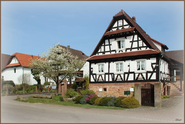 Seebach en Alsace