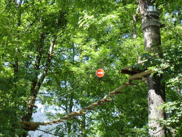 Sens interdit dans les arbres