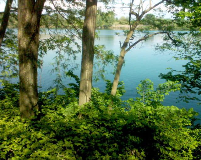 Sérénité au bord d'un lac...