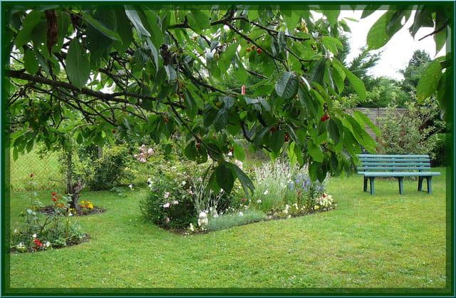 S r nit d 39 un petit jardin normand par jacqueline dubois for Le jardin normand