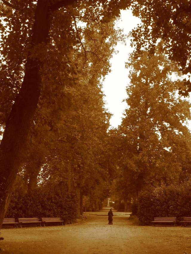 Seule au jardin
