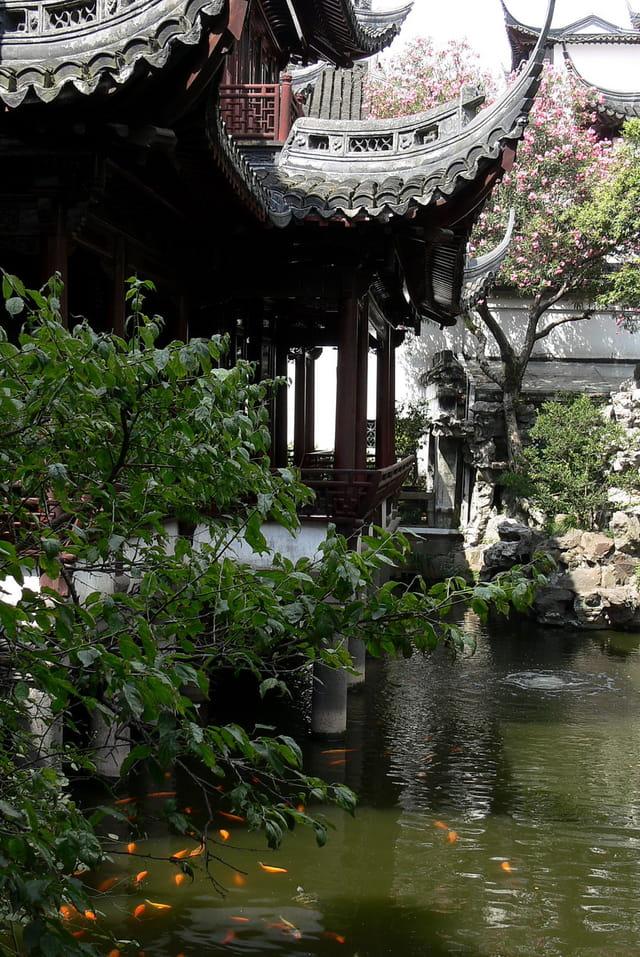 Shanghai jardin yu 1 par robert danecki sur l 39 internaute for Jardin yu shanghai