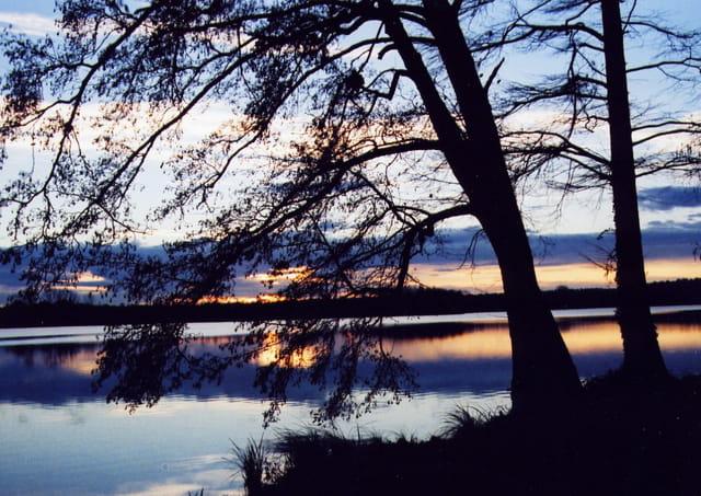 Soir d'hiver sur le lac
