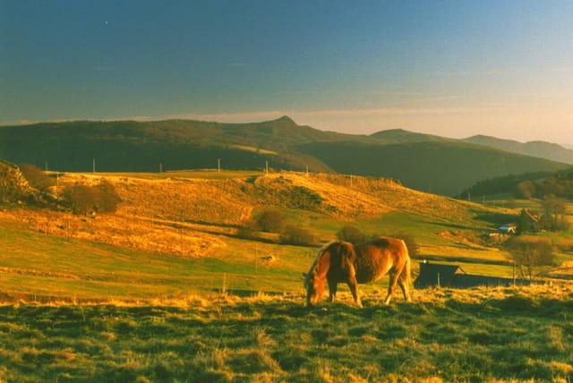 Soir sur le plateau d'Ardèche
