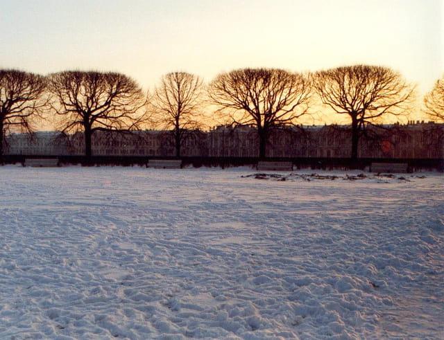 Soleil d'hiver