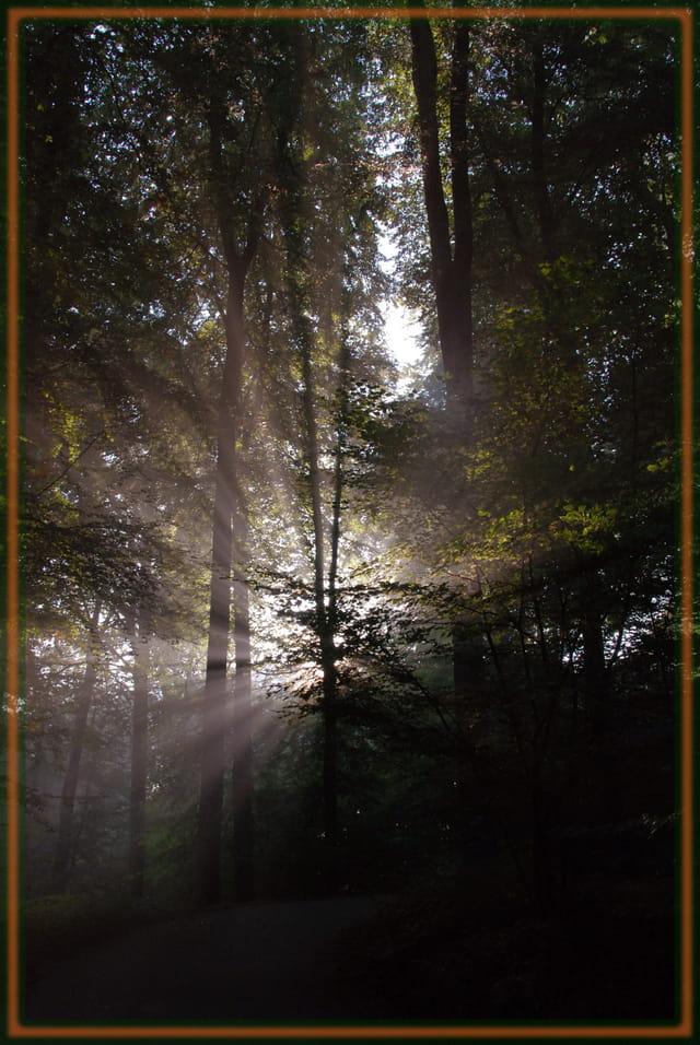 Soleil voilé