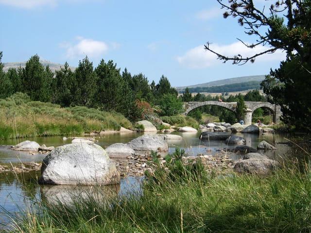 Source du Tarn