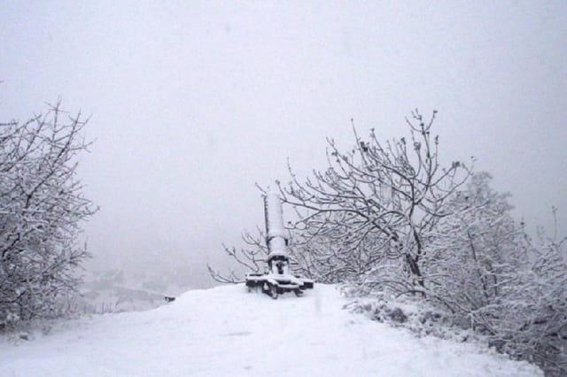 Canon sous la neige
