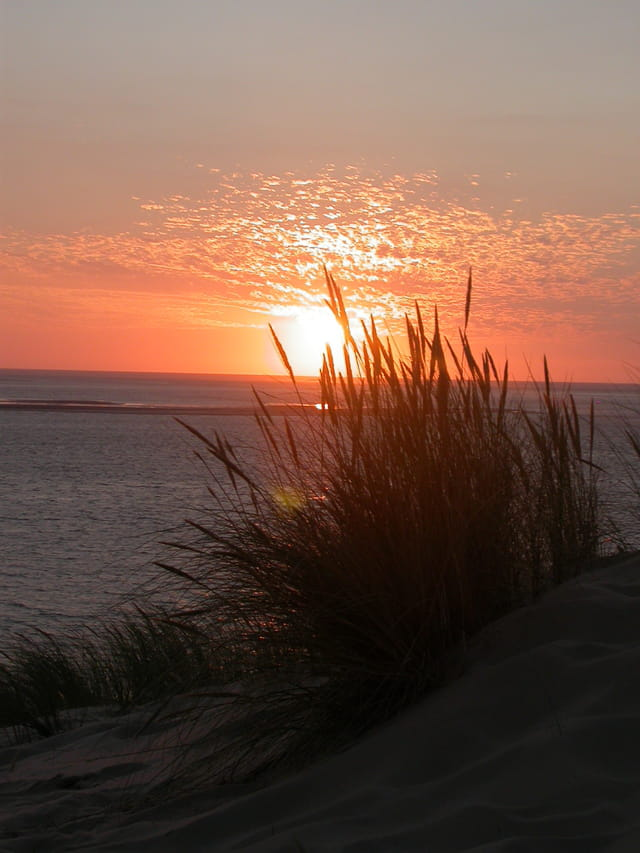 Souvenir d'une dune