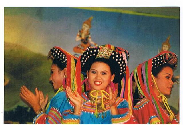 Spectacle de danses thaï
