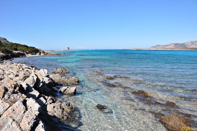 Spiaggia la Pelosa 31