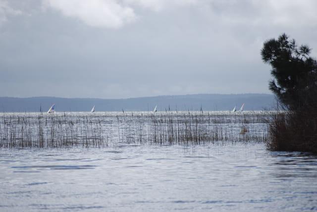 sport sur le lac