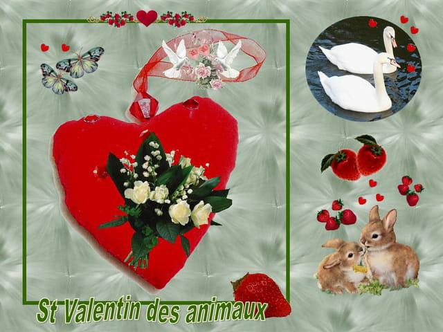 St Valentin des animaux