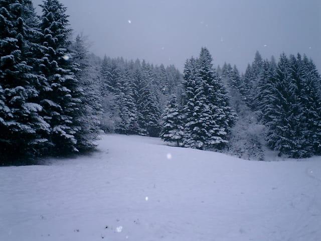 Stade de neige