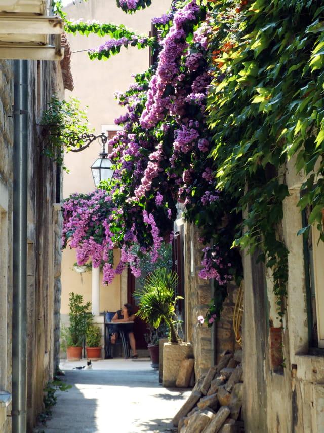 Ston ruelle et fleurs