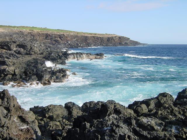 Sud Réunion