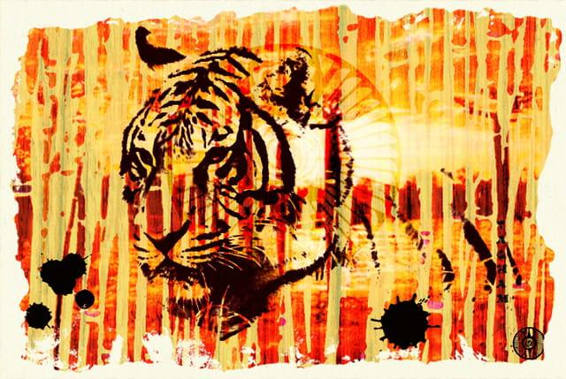 Sunrise tiger