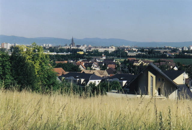 Sur la Colline de Mittelhausbergen