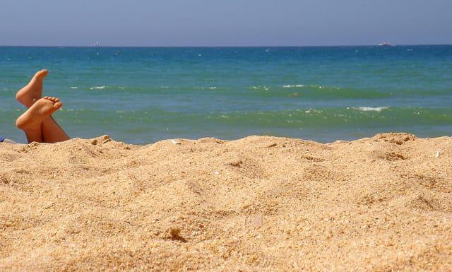 Sur la plage ensoleillée