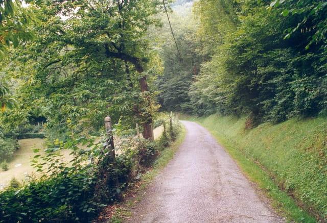 Sur le chemin de la route