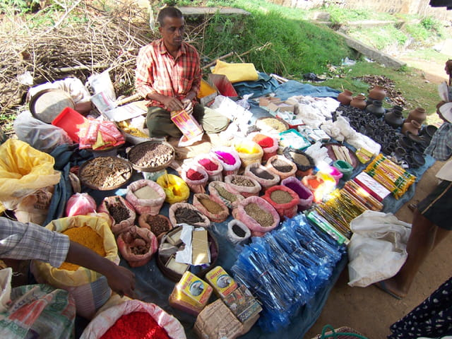 Sur le marché indien