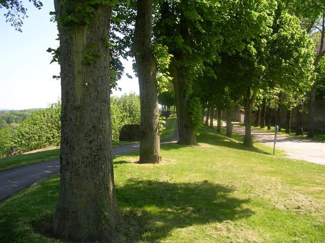 Sur le remparts de Montreuil sur Mer