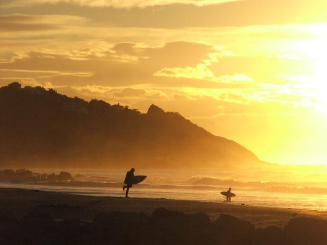 Surf d'automne