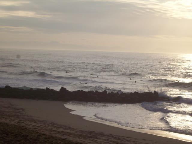 Surfeur à l'eau