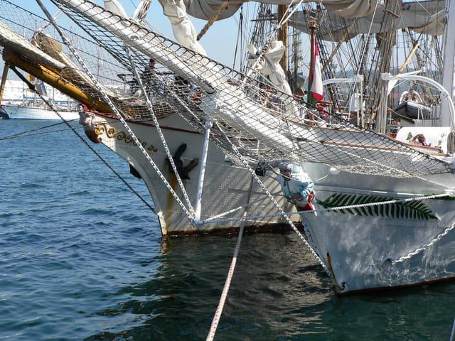 Tall ships' race 5