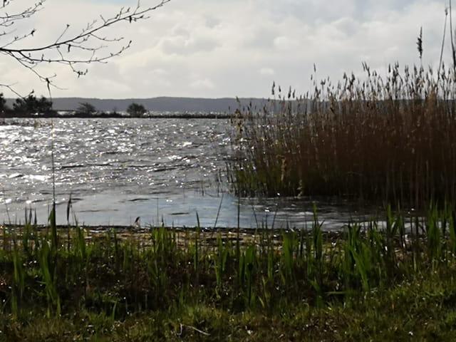 tempête sur le lac
