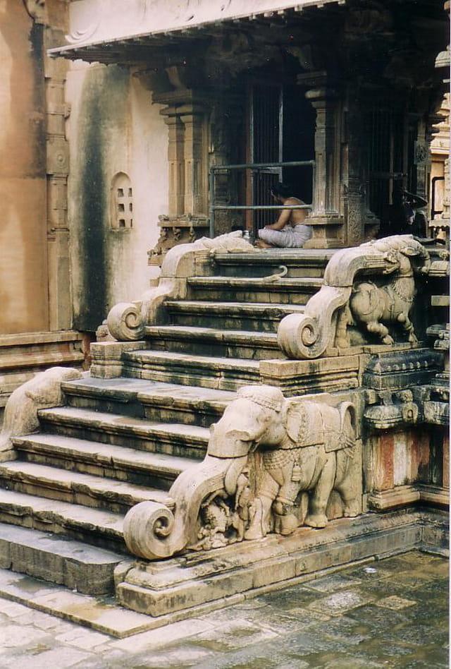 Temple chola, escalier éléphants