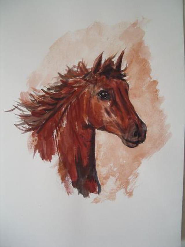 Tête de cheval en aquarelle