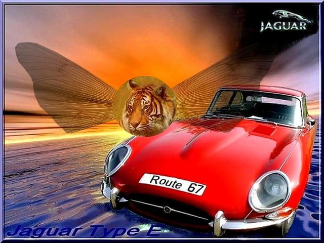 Tigre ou jaguar
