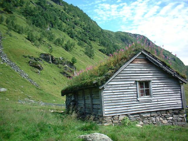 Toit De Tourbe Par Anette Montagne Sur L Internaute