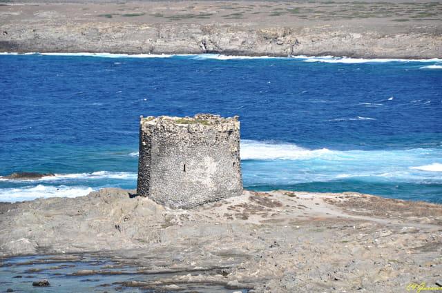 Torre la Pelosa 11