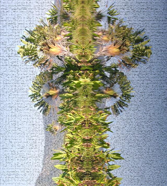 Totem végétal
