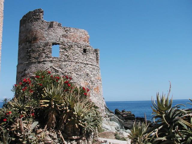Tour gênoise en Corse