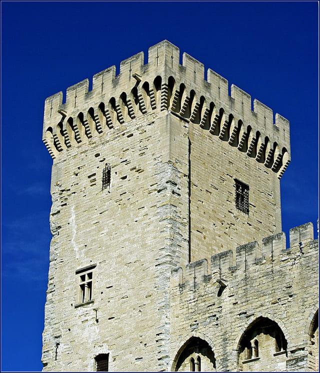 Tour nord du palais