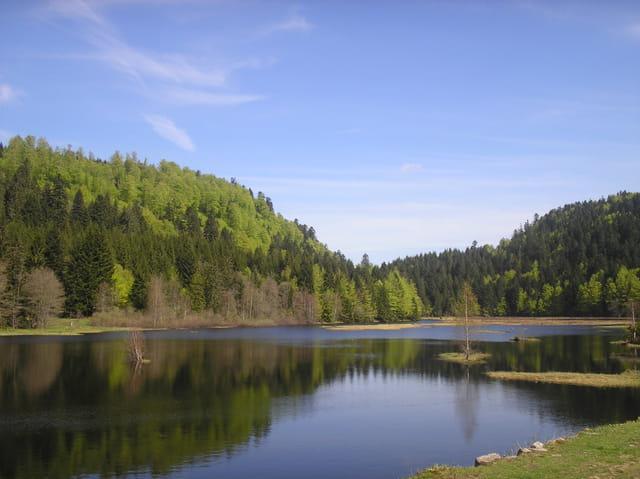 Tourbiére du lac de lispach