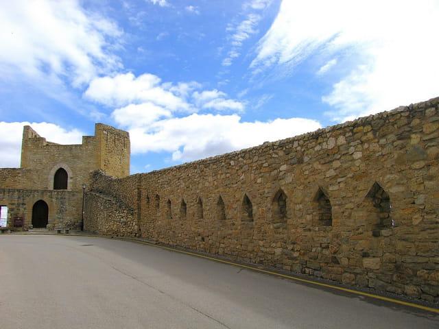 Tours et Murailles (9)