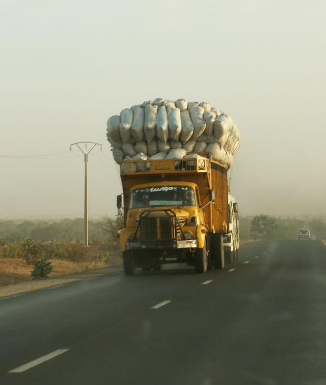 Transport de foin au sénégal