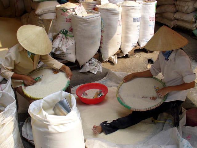 Trieuses de riz